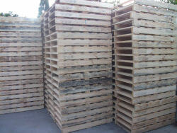 Side angle of New 1 Tonne Standard Pallets in Sydney yard (thumbnail)